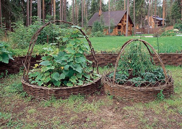 Грядки своими руками для огорода