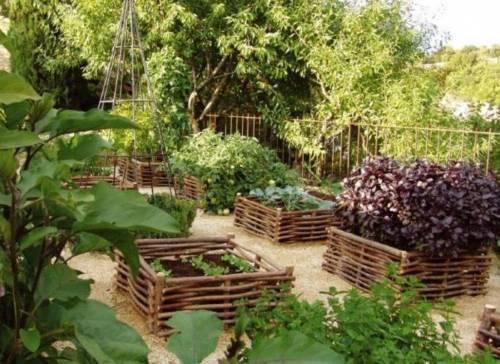 Рациональное размещение растений на дачном участке - залог хорошего урожая.  Чтобы выбрать для грядок, деревьев...